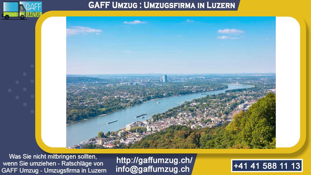 Was Sie nicht mitbringen sollten, wenn Sie umziehen - Ratschläge von GAFF Umzug - Umzugsfirma in Luzern